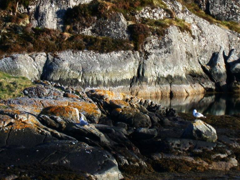 Herøy Gard - omgivelser - kystperla.no